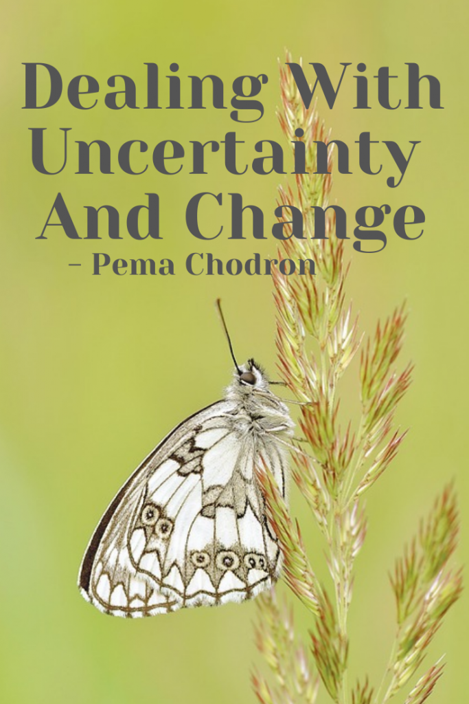 Dealing with Uncertainty and Change
